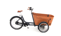 Babboe Flow Mountain 500 Wh
