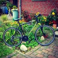 Romet Crossrad Orkan M