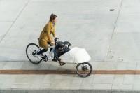 CohandCo VeloSled Anna Carbon Cargobike