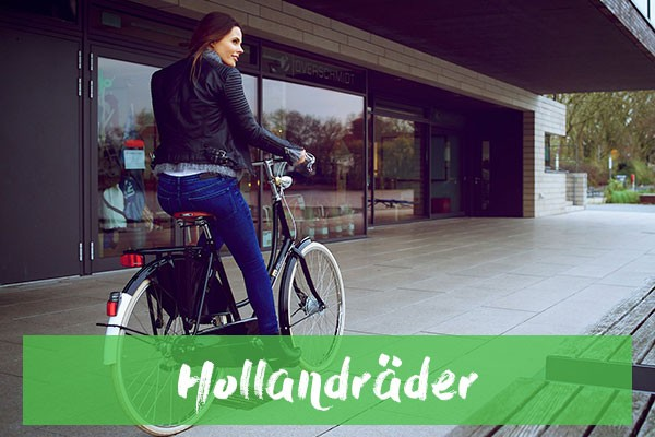 media/image/teaser-hollandrad.jpg