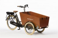 Bakfiets Trike Cruiser Narrow Steps
