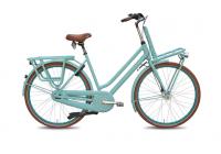 "Cargobike ""Daily light"""