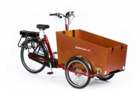 Bakfiets CargoTrike Classic Wide Steps