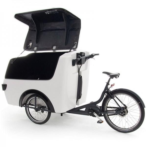 Babboe Pro Trike XL Lastenfahrrad
