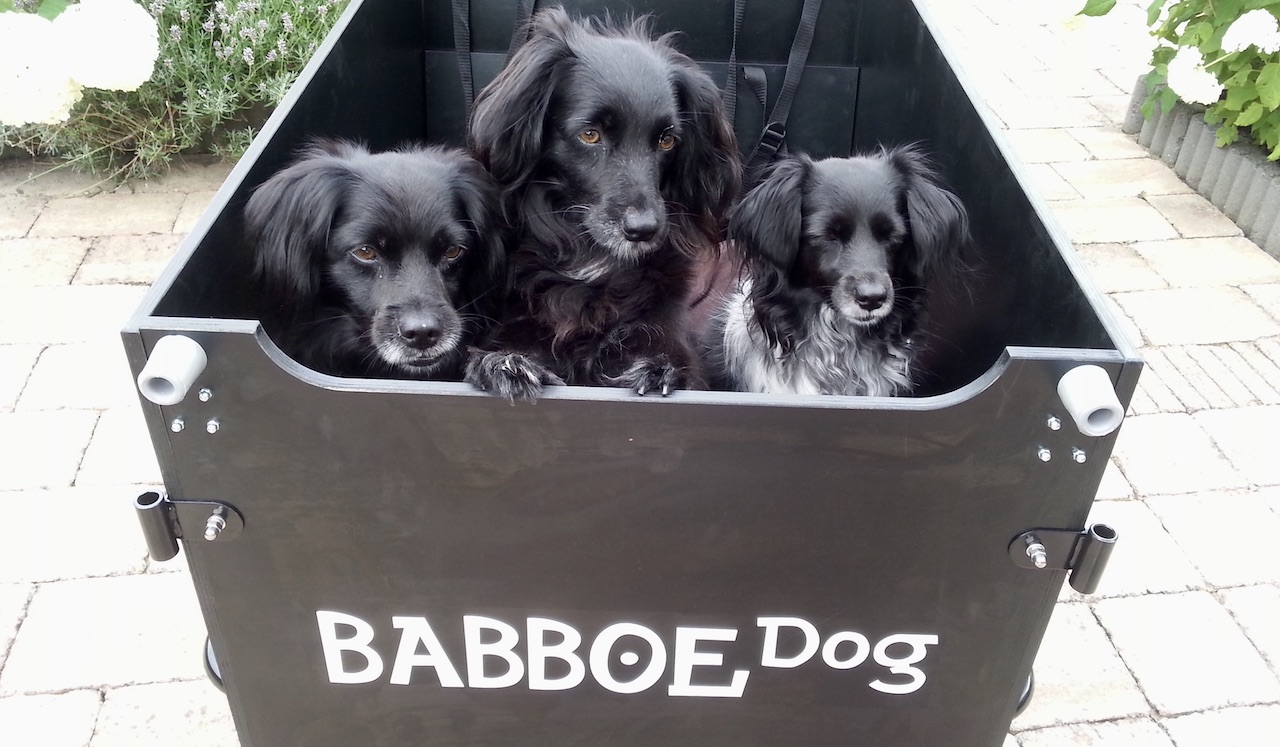 Lastenrad Babboe Dog